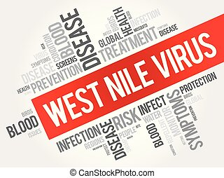 West Nile Virus word cloud collage, health concept...