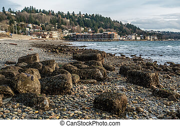 West Seattle Coast Landscape 3
