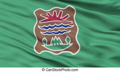 Western Abenaki Indian Flag Closeup Seamless Loop - Western...