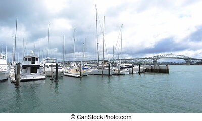 Westhaven marina Auckland - Westhaven marina against...