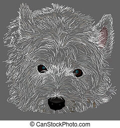 Westie close up - A drawing of a West Highland White Terrier...