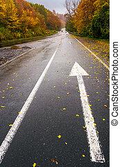 wet asphalt road through forest in deep autumn. gloomy rainy...