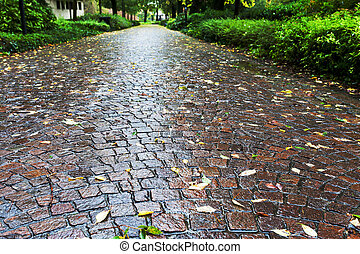 wet cobble stone path in parco dell arena, Padua in autumn day