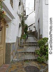 Wet cobblestone alley