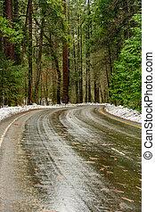 Wet Curve Through Yosemite