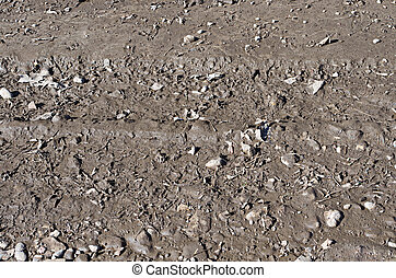 Background of wet earth with stones