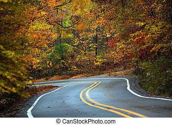 Wet Fall Day in the Ozarks - Curvy road winds through the ...