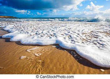 Wet Feet - Waves wash over golden sand on Australian beach