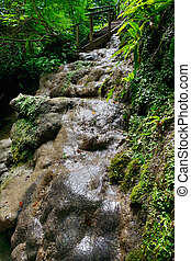 Wet path with a stream in the forest and wooden staircase