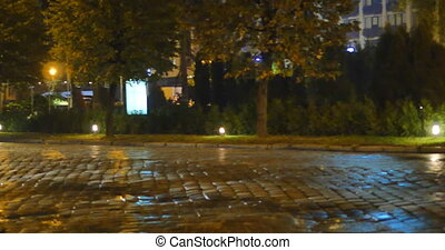 wet pavement street with car.