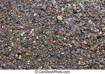 Colourful wet pebbles on a Lake Erie beach