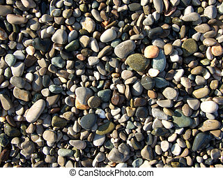 wet pebbles on the beach of the Black Sea2