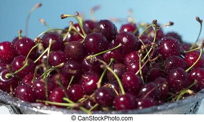 Wet ripe red cherries in colander after washing.