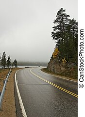 Wet road on a misty fall day in Lappland.