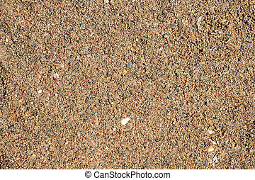 Extremely sharp close-up of wet sand texture.