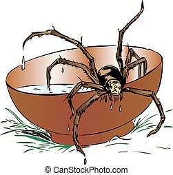 Wet spider coming out of a bowl - Illustration of a wet ...