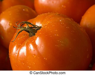 wet tomatoe #2