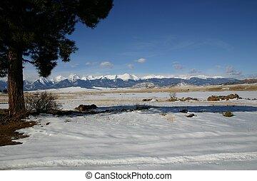 Wet Valley Snows