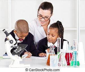 wetenschap, primair, stand