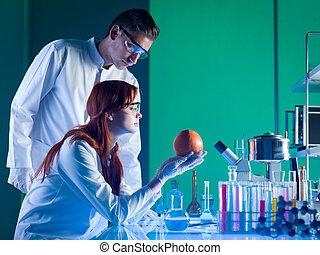 wetenschappers, studerend , een, grapefruit
