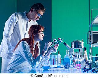wetenschappers, studerend , een, moleculaire structuur