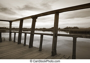 wetland, af træ, synspunktet, ind, sepia, tone.