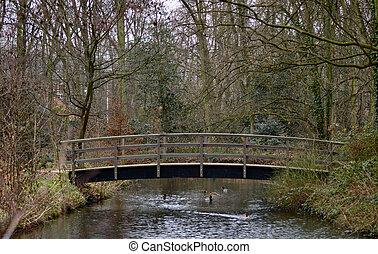 Wooden Bridge in a wetlands park.
