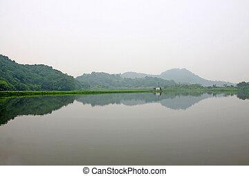 wetland, dam