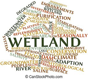 Wetland - Abstract word cloud for Wetland with related tags...
