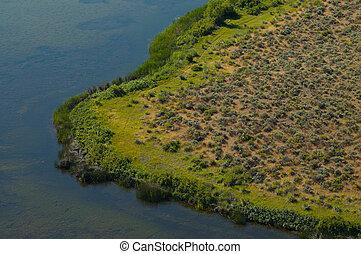Wetland Illusion