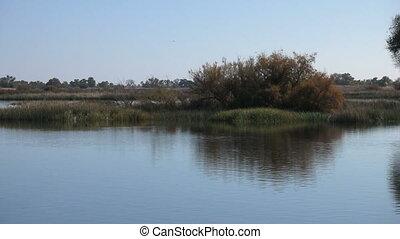 Wetland In Fall - Wetland in Fall