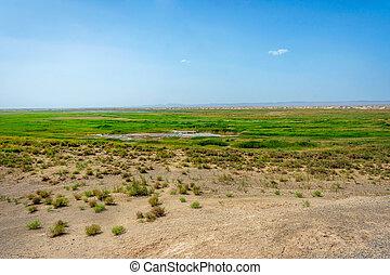 Wetland oasis lake in Gobi desert, Dunhuang, China - Wetland...
