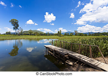 Wetland pond at blue sky in Hong Kong