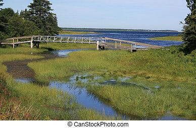 Wetland along the east shore of New Brunswick, Canada.