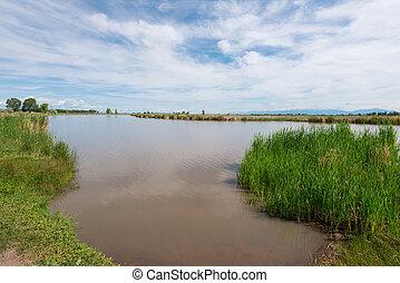 wetlands, espaço aberto