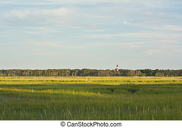wetlands, faro, virginia