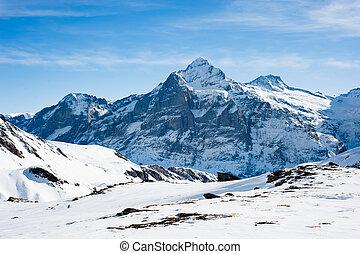 Wetterhorn (3692m) mountain peak, view from Faulhorn,...