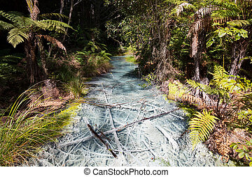 Whakarewarewa Forest Acidic Pools - Acidic sulphur pools in...