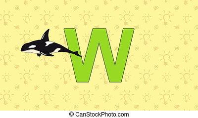 Whale. English ZOO Alphabet - letter W - Animated English...