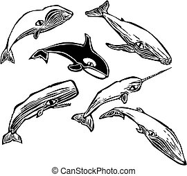 Whale Group - Woodcut vintage style image of a group of...