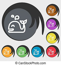 Whale icon sign. Symbols on eight colored buttons. Vector