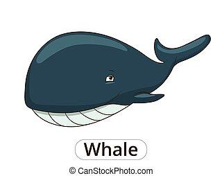 Whale sea animal fish cartoon illustration - Whale sea...