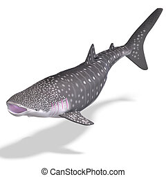 whale shark. 3D render with clipping path and shadow over ...