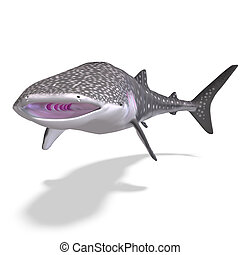 whale shark. 3D render with clipping path and shadow over...