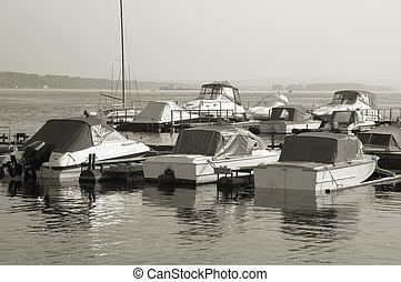 wharfboat, en, el, mañana
