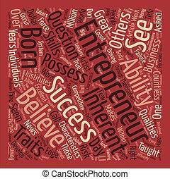 What Does It Take To Be An Entrepreneur Word Cloud Concept Text Background