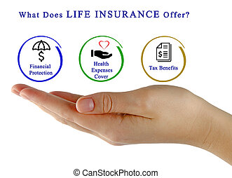 What Does Life Insurance Offer?