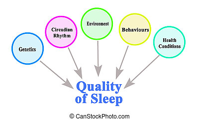 What Influence Quality of Sleep
