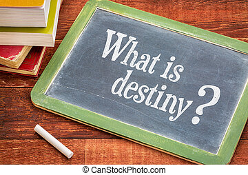 What is destiny question on blackboard - What is destiny...