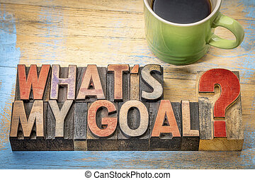 What is my goal?